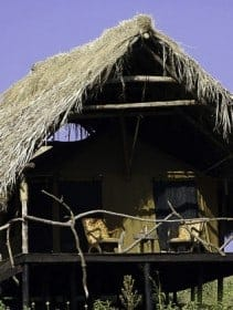 ngorongoro-crater-tented-camp