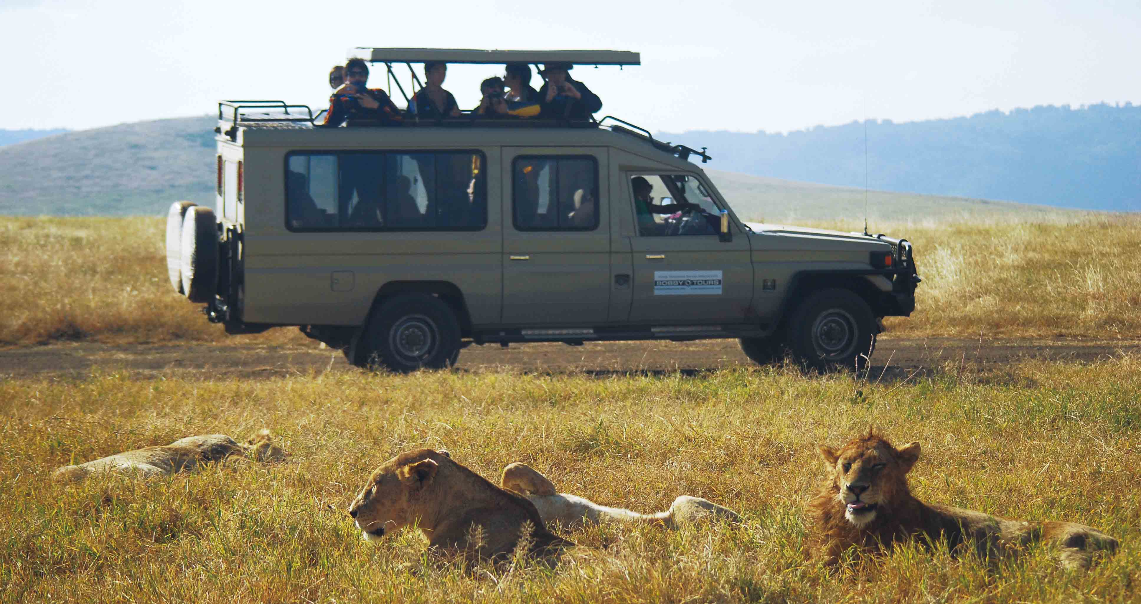 Safari Landcruiser Bobby Tours