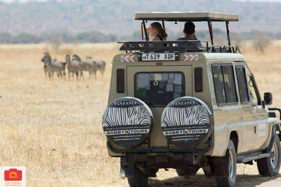 Safari Vehicle Bobby Tours